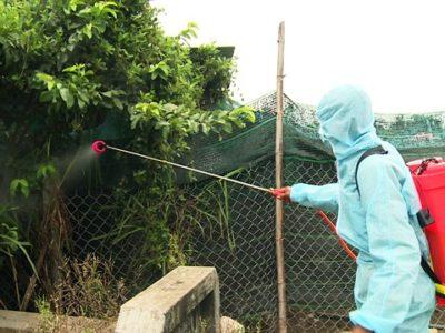 Nhân viên khử trùng phòng bệnh H5N6