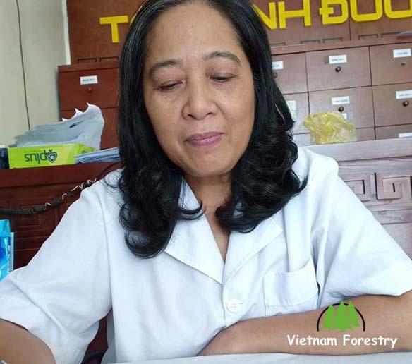 Việt Nam Forestry